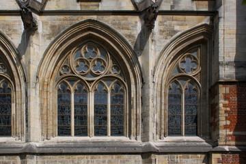 Sint-Quintinuskathedraal, Hasselt, Vlaanderen, frühgotische Fenster