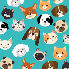 heads dogs and cats pets pattern