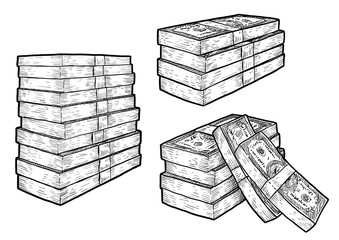 Money, bank notes, coins illustration, drawing, engraving, ink, line art, vector