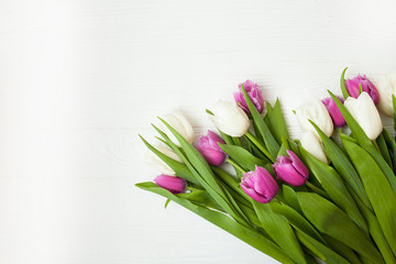 Fresh tulips on a white wooden background for Mother's Day