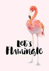 Hand drawn flamingo couple. Pink tropical bird. Lets flamingle Lettering quote.