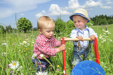 fesche Jungs entdecken die Natur im Frühling