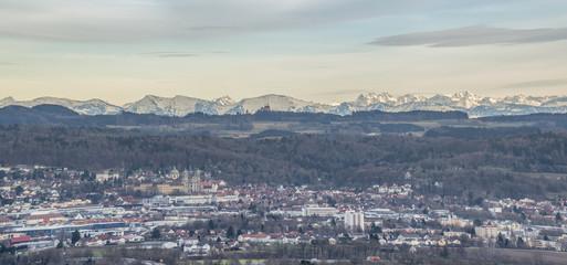 Weingarten mit schneebedeckten Alpen