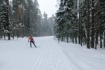 Young adult Caucasian female practising cross-country skiing on a scenic forest trail