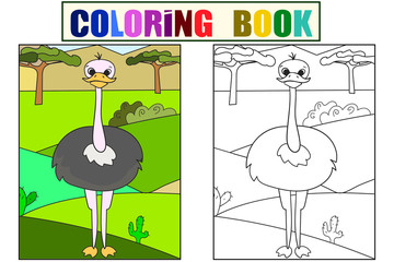 Children picture cartoon animal Safari. The common ostrich is walking in the clearing. Vector Coloring, black and white bird