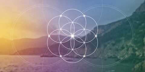 Sacred geometry flower of life website banner with golden ratio numbers, interlocking circles and particles in front of nature background. The formula of nature. Wall mural