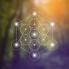Metatron Cube and Flower of Life futuristic vector illustration in front of natural blurry background. Sacred geometry magic symbol design template...