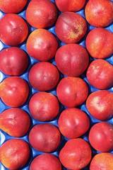 Nectarines full frame