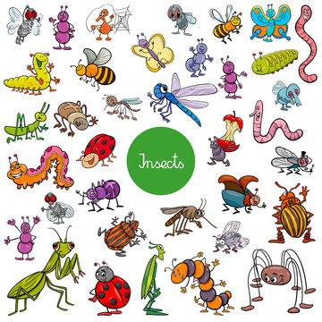 cartoon insects animal characters big set