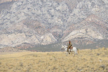 Cowboy riding horse in wilderness, Rocky Mountains, Wyoming, USA