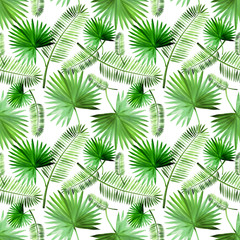 Tropical green palm leaf pattern set watercolor illustrated