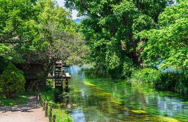 水車が回る川辺の風景 安曇野