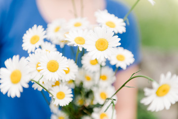 teenage girl picking daisies