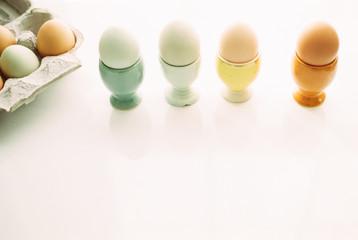 eggs in pastel egg holders