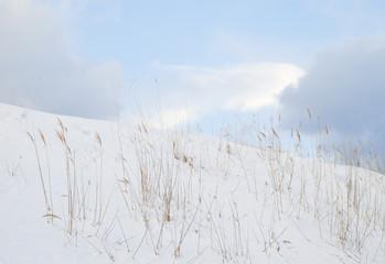 冬 雪 枯草 空 雲 素材