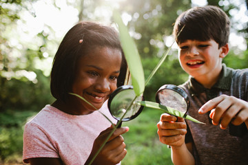 Children looking plant through magnifying glass