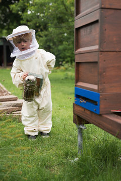 Little beekeeper - fascinated and respectful