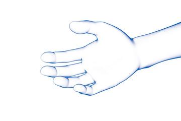 Hand, Human Body Part