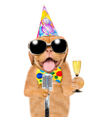 Funny puppy in party hat and sunglasses holding retro microphone and champagne. Isolated on white background