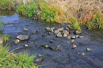 小さな川 A small river