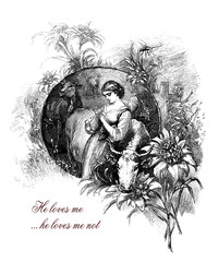 He loves me...he loves me not, girl with edelweiss, romantic vintage engraving