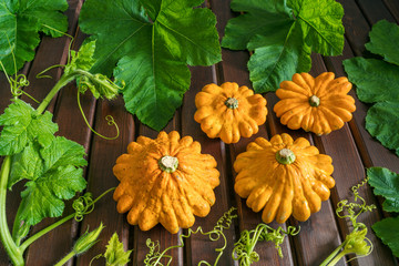 Orange squashs with green leaves and stems on a brown wooden background, top view