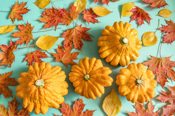 Orange patissons, red and yellow autumn leaves, top view