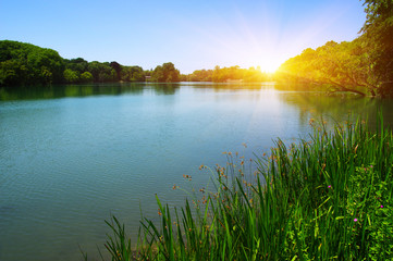 Photo sur Plexiglas Lac / Etang Lake water and sun
