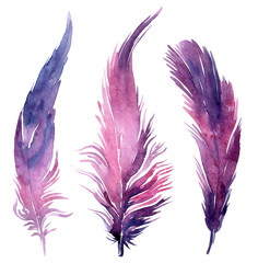 Set of watercolor boho feather illustrations.