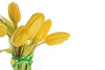 7 yellow tulips isolate