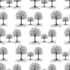 Pattern of the trees silhouettes