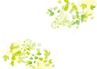 円 グリーン 白