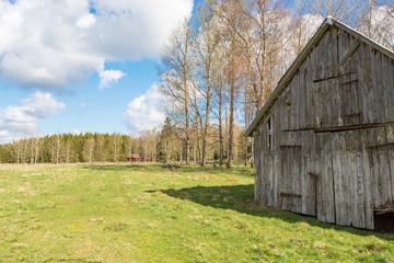 Old weathered shed in rural landscape