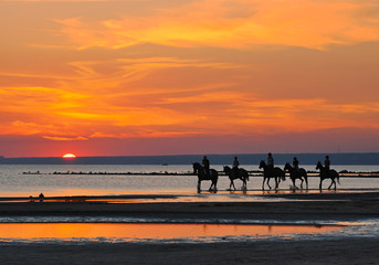 The picture is taken at sunset, on the shore of the Gulf of Finland riders on horseback.