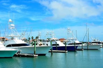 Boats moored at a marina Florida, USA