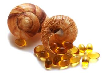 Escargot Chiocciola Caragol de terra Snail Σαλιγκάρι Шуйсем