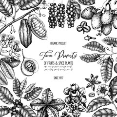 Vector design template with tonic and spicy plants. Hand drawn spices illustrations . Vintage frame with aromatic elements. Sketched flowers, leaves, seeds, fruits, nuts, beans.