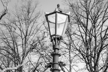 lantern.  black and white photo