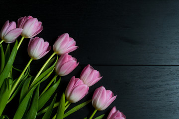 Border from bright pink tulips flowers on black wooden background. Selective focus. Place for text. Flat lay.