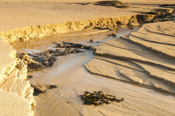 Sand Patterns / Water channels cut into the sand by burns at low tide on Sanna Bay, Lochaber, Ardnamurchan, Scotland. 01 January 2018.