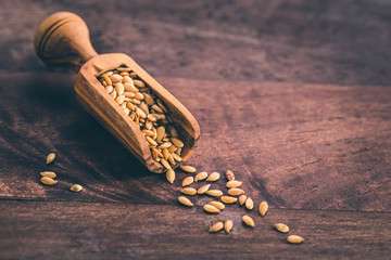 Golden flax seeds in scoop closeup on old wooden background with copy space