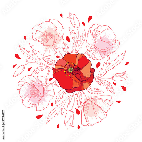 Vector round bouquet with outline red poppy flower bunch bud and vector round bouquet with outline red poppy flower bunch bud and leaves in pastel isolated mightylinksfo Choice Image