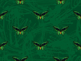 Butterfly. Seamless pattern of butterflies. Endless colorful texture vector background. Perfect for wallpapers, pattern fills, web page backgrounds, surface textures, textile