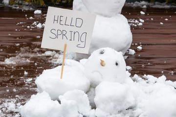 "Broken and sad snowmen. The concept of ""hello spring."" Spring came. In the hands of a snowman there are tulips and a sign with an inscription. Snow is melting. March."