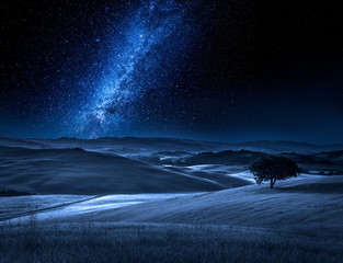 Alone tree on field at night with milky way