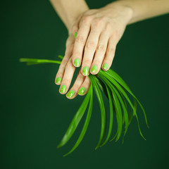 woman in green shirt hands holding some tropical leaves, sensual studio shot can be used as background