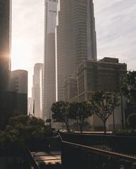 Buildings Sunset