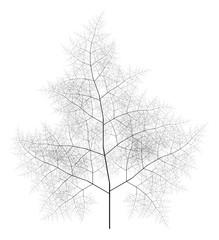 Flat Vector Computer Generated Self-Similar L-system Branching Tree Fractal  - Generative Art