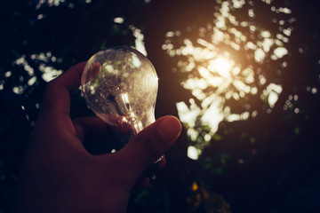 The Light Bulb Represent The  Creativity