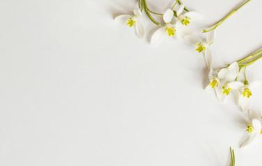 Romantischer Blumenrahmen mit Schneeglöckchen auf hellem Hintergrund